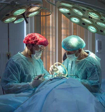 Hip And Joint Replacement Surgery In Pakistan For Patients | Orthopedic Surgeons