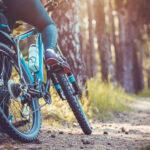 Beach Cruiser Bikes Men